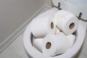 vaso sanitário entupido o que fazer?