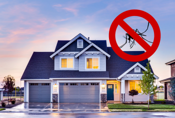 Dicas para acabar com insetos perigosos em casa neste verão