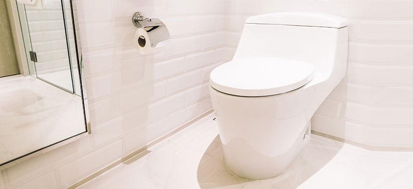 papel higiênico na privada
