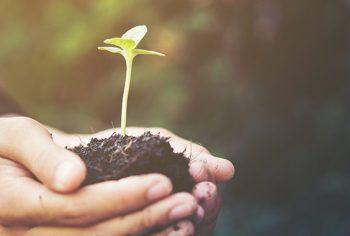 Faça a sua parte – Dicas para cuidar do meio ambiente!