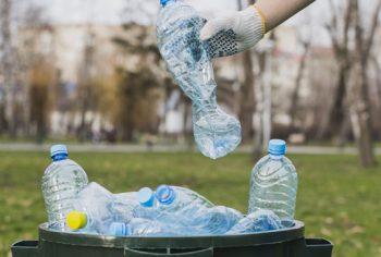 Cuidar do lixo doméstico – Ajuda o meio ambiente e evita insetos indesejados