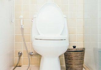 Mistos sobre como desentupir vaso sanitário