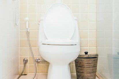 3 Mitos sobre como desentupir o vaso sanitário