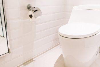 3 coisas que você nunca deve jogar no vaso sanitário