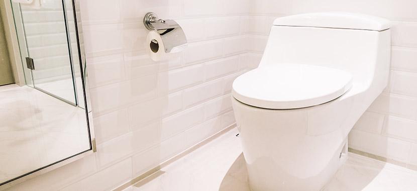 nunca jogue isso no vaso sanitário