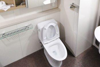 Vai tentar desentupir o vaso sanitário? Veja o que deve e não deve fazer