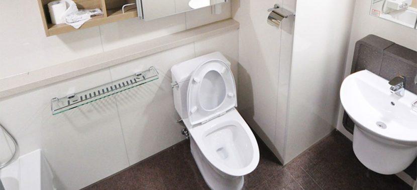 Como desentupidor vaso sanitário