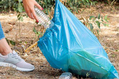 Seja consciente e ajude no controle de pragas do seu bairro