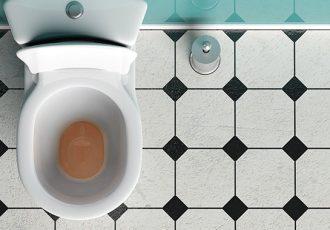Como desentupir o vaso sanitário