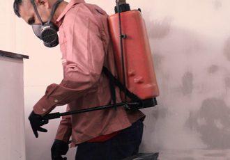 Dedetização, limpeza de caixa d'água e sanitização para começar 2021 organizado